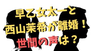 早乙女太一と西山茉希が離婚!世間の口コミや反応は?